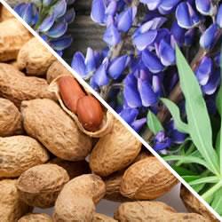 allergie kleurstoffen symptomen