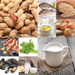 Wat is een Voedselallergie?