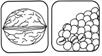 noten en soja